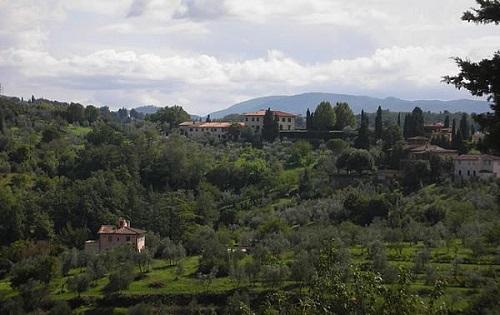 colline fiorentine