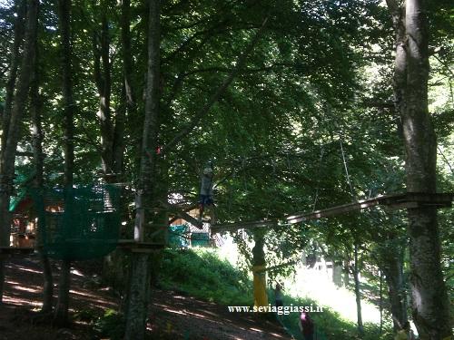family adventure park Polsa